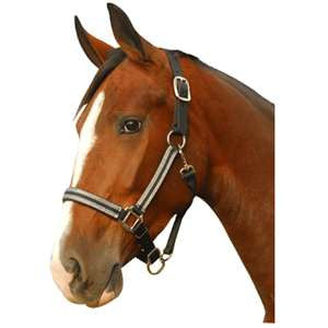 Breakaway Safety Horse Halters