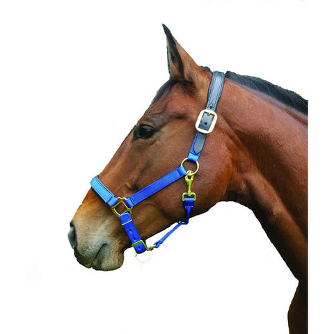 Breakaway Halter - Chafeless with Padded Crown & Nose