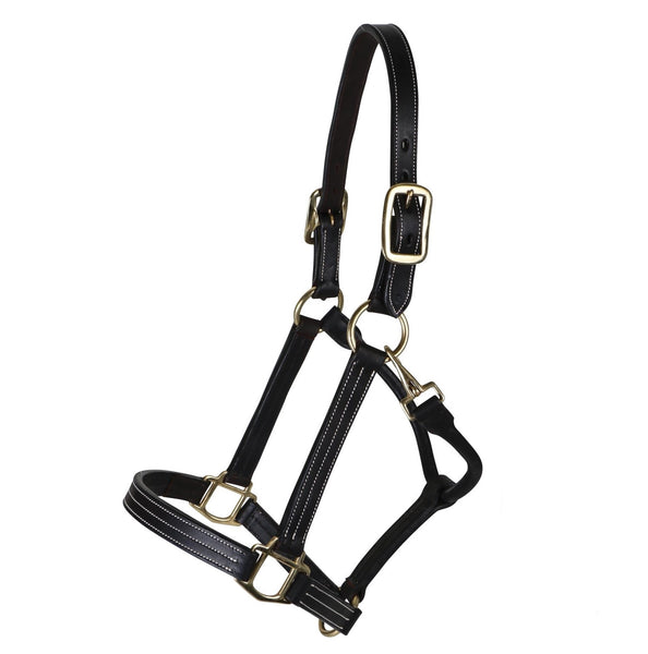 Billy Royal - Keeneland Leather Halter - Quail Hollow Tack