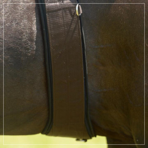 EquiFit - Essential Girth - Quail Hollow Tack