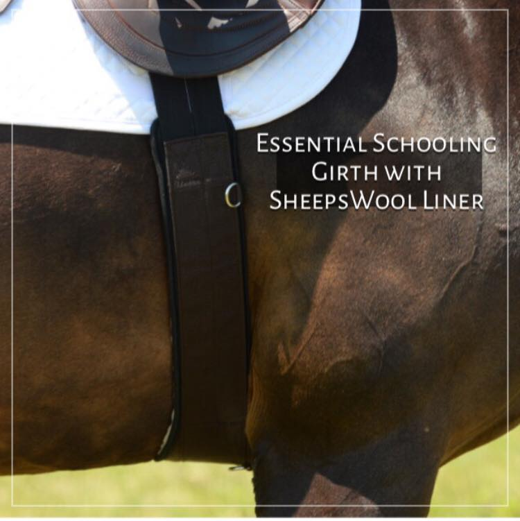 EquiFit - Essential Girth with SheepsWool - Quail Hollow Tack