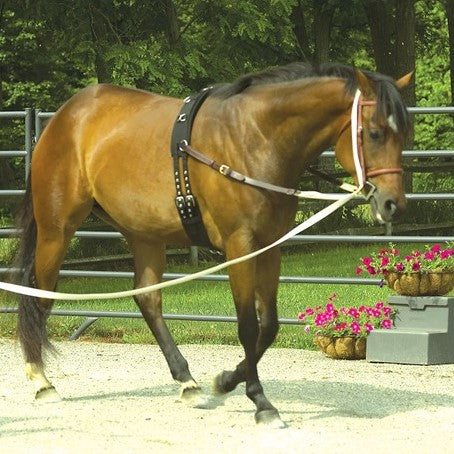 Perri's Leather - Synthetic Training Surcingle - Quail Hollow Tack