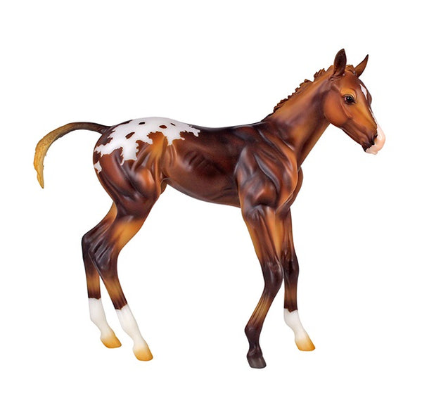 Breyer - Espresso - Springtime Filly - 1:6 Scale - Quail Hollow Tack
