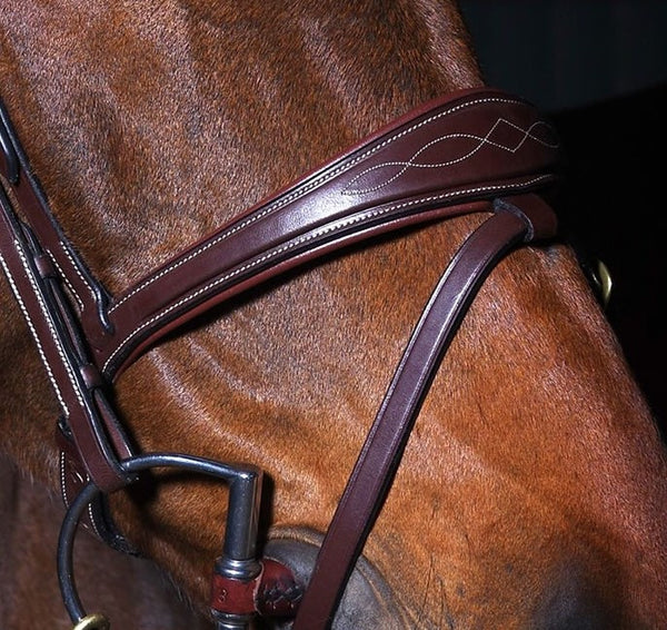 Dy'on - Anatomic Flash Noseband Bridle - New English Collection - Quail Hollow Tack