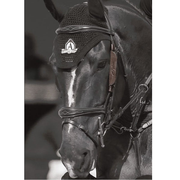 Dy'on - Focus Cheek Pieces - Quail Hollow Tack