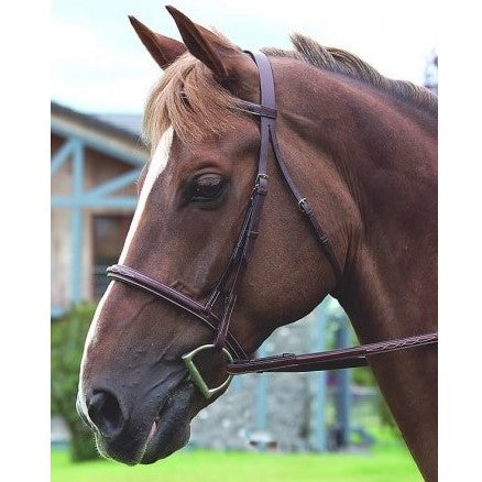 Dy'on - Hunter Classic Bridle - Quail Hollow Tack