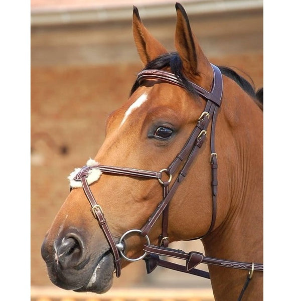Dy'on - Figure 8 Noseband Bridle - Quail Hollow Tack