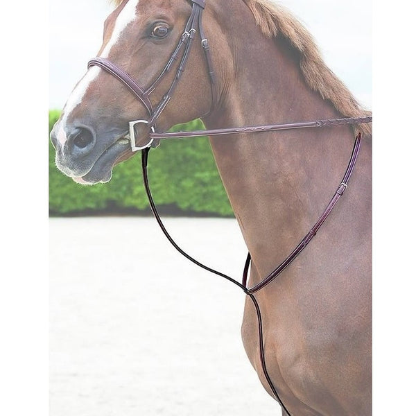Dy'on - Standing Martingale - Quail Hollow Tack
