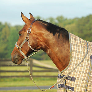 Curvon - Baker Lead with Chain - Quail Hollow Tack
