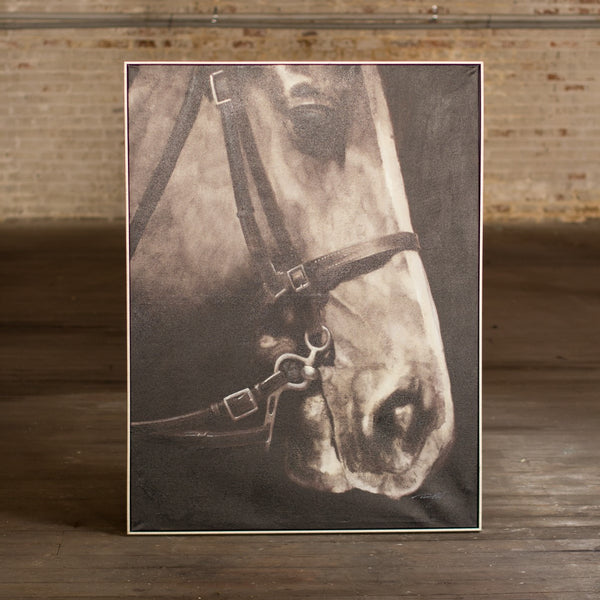 Black and White Horse With Silver Frame - Oil Painting