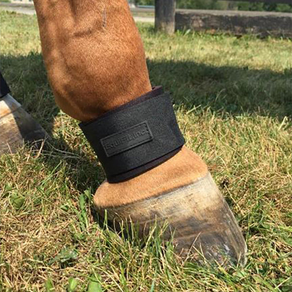 Equifit - Pastern Wrap - Quail Hollow Tack