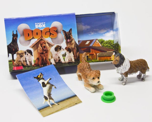Pocket Box Dogs - Blind Bags