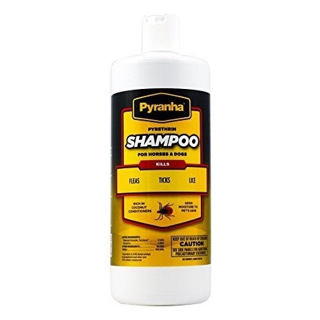 Pyrethrin Shampoo for Dogs & Horses