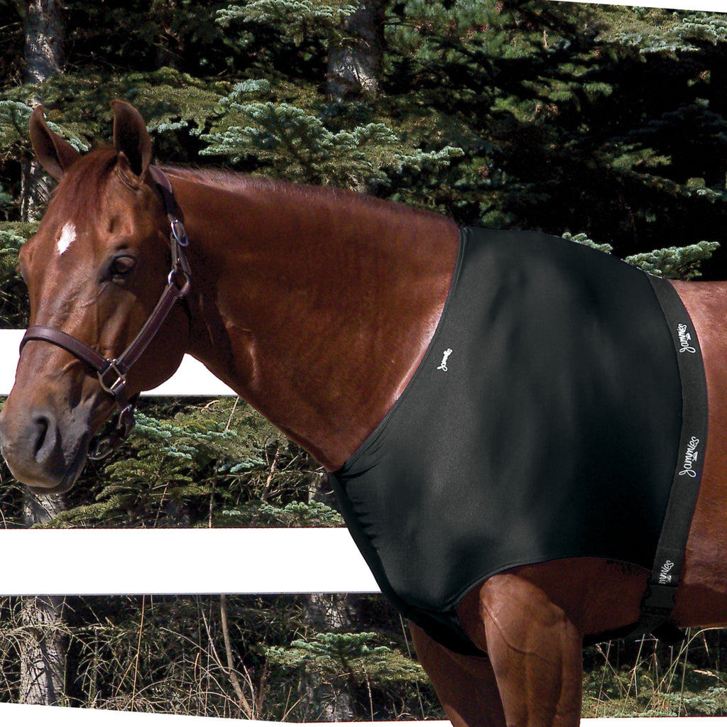 Toklat - Jammies Shoulder Guard - Quail Hollow Tack
