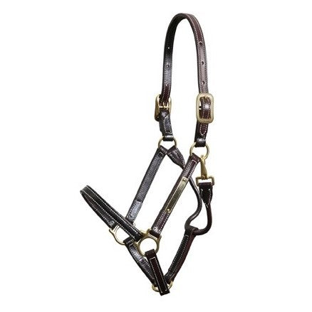 Walsh - Showman Halter - Quail Hollow Tack