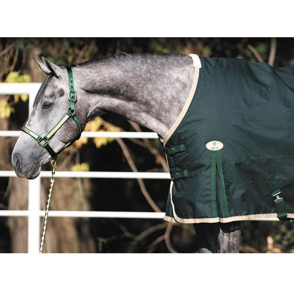 Big D - Sterling Blanket - Quail Hollow Tack