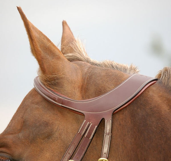 Dy'on - Difference Flash Noseband Bridle - Quail Hollow Tack