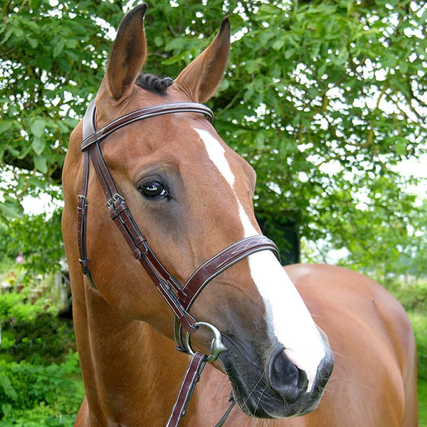 Wide Nose Hunter Bridle