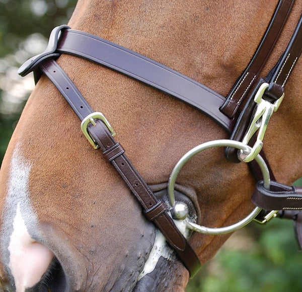 Dy'on - Flat Flash Bridle with Snaps - Quail Hollow Tack