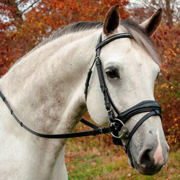 Piaffe Bridle with Reins
