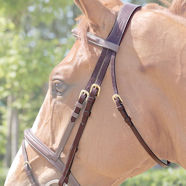 Dy'on - Anatomic Crownpiece - Quail Hollow Tack