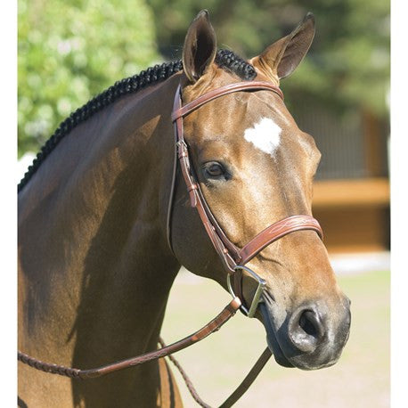 Rodrigo Pessoa Fancy Wide Show Bridle With Laced Reins