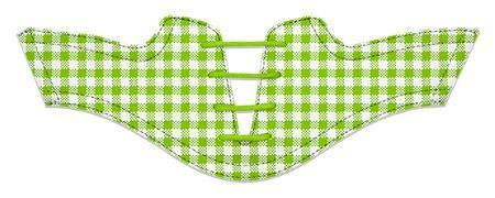 Women's Lime Green Gingham Saddles Flat Saddle View From Jack Grace USA