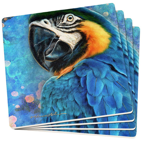 Exotic Blue Gold Macaw Set of 4 Square Sandstone Coasters