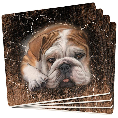 English Bulldog Live Forever Set of 4 Square Sandstone Coasters