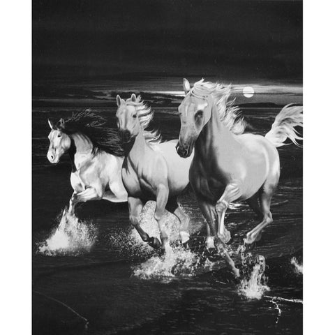 Horses Midnight Beach Run Beach Blanket