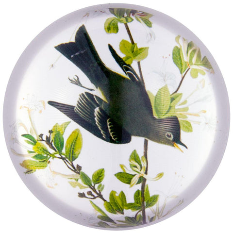 Western Wood Pewee Flying In Branches Glass Paperweight