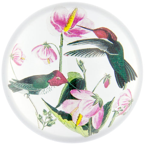 Anna's Hummingbirds In Flowers Glass Paperweight
