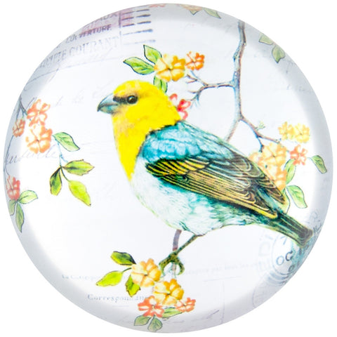 Blossom Blue-winged Warbler Side Profile Glass Paperweight