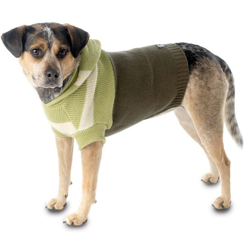 Harley's Olive Stripe Hooded Dog Sweater