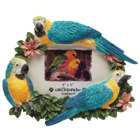 Macaw Trio in Branches Large Picture Frame