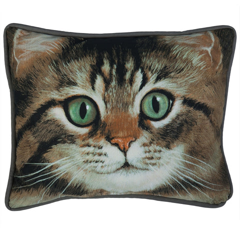 Tabby Cat Decorative Pillow