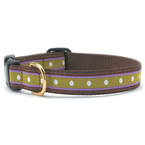 Dotty Stripe Dog Collar