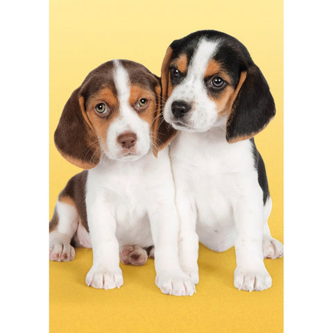 My Beagle Puppies 260 Piece Mini Jigsaw Puzzle