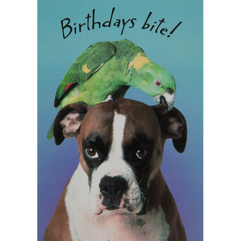 Birthdays Bite Birthday Greeting Card