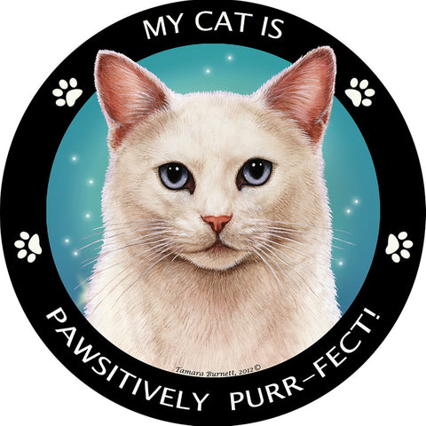 Blue Eyed White Pawsitively Purr-Fect Magnet