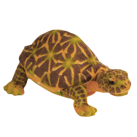 Box Turtle Plush Toy