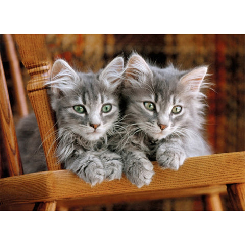 Grey Kittens On A Chair 500-Piece Puzzle