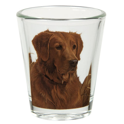 Golden Retriever Portrait Shot Glass