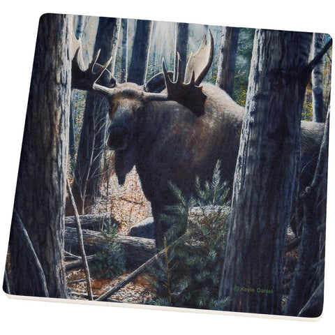 Moose King of the Northwoods Set of 4 Square Sandstone Coasters