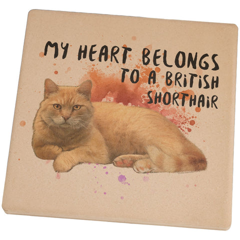 My Heart Belongs British Shorthair Cat Set of 4 Square Sandstone Coasters
