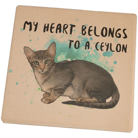 My Heart Belongs Ceylon Cat Set of 4 Square Sandstone Coasters