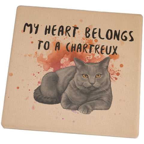 My Heart Belongs Chartreux Cat Set of 4 Square Sandstone Coasters