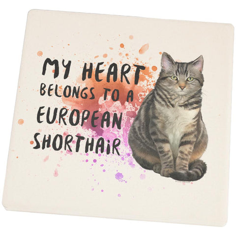 My Heart Belongs European Shorthair Cat Set of 4 Square Sandstone Coasters