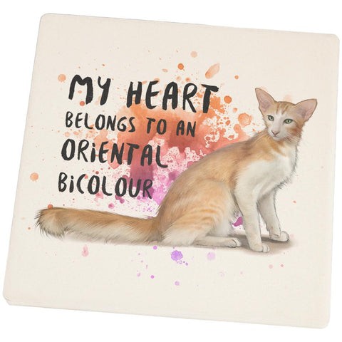 My Heart Belongs Oriental Bicolour Cat Square Sandstone Coaster
