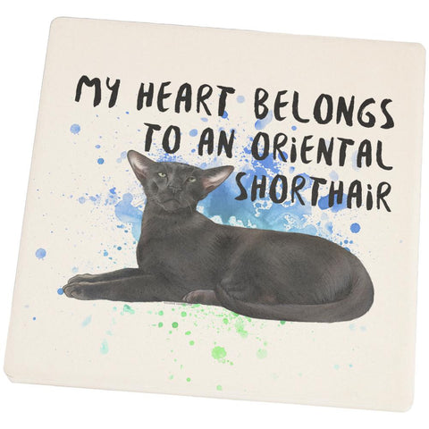 My Heart Belongs Oriental Shorthair Cat Set of 4 Square Sandstone Coasters
